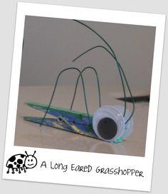wire bug craft   Farm Fresh Adventures: MFW Hightlights: #11 Ii Insect