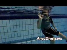 아리아다이브 (AryaDive.com)  2012.11.24 정모 & 스킨 다이빙 교육