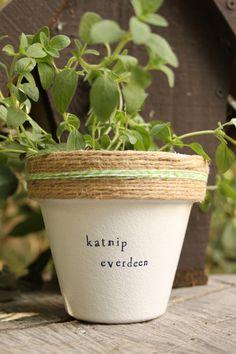 Katnip Everdeen by PlantPuns on Etsy