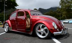 Candy Red Choptop