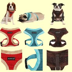 Yuppie (winter) harness from Puppia! Dog Cat, Aqua, Colours, Puppies, Medium, Cats, Brown, Winter, Red