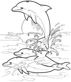 delfin bilder zum ausmalen | mandala zum ausdrucken, mandala ausmalen, malvorlagen