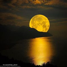 """""""Don't worry if you're making waves simply by being yourself. The moon does it all the time."""" ~Scott Stabile  Happy Full Moon! via Project Happiness FB"""