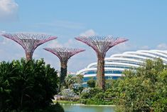 [Singapur mit Kindern] Unsere Tipps: von Übernachtung über Essen bis Sightseeing - Planet Hibbel Marina Bay Sands, Das Hotel, Dom, Pergola, Outdoor Structures, Children, Interactive Display, Walking Paths, Light Installation