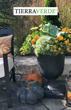 Enjoy year-round use of the Crescendo Urn, especially in Fall! Made or durable recycled rubber from used car and truck tires, this urn from the TierraVerde collection is unbreakable! Transition summer plantings to cool-weather loving plants, and leave this planter out. Water plants as usual, with the drain plug removed for outside use. This will allow the water-reservoir to hold sufficient water to keep plants moist, while over-watering or excess water from rainfall drains. Arcadia Garden, Floors And More, Plant Health, Fall Planters, Recycled Rubber, Self Watering, Outdoor Living Areas, Water Plants, Outdoor Plants