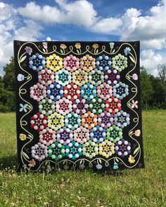 Jessie's Gems is not your Grandmother's Flower Garden! This quilt was inspired by a nameless block in an old newspaper and mixes Hexies with other shapes for the sweetest quilt! Millefiori Quilts, Colorful Quilts, Amish Quilts, Hexagon Quilt, Garden Crafts, Garden Ideas, Annual Plants, English Paper Piecing, Quilt Patterns