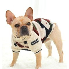 Dog Hoodie Winter Pet Dog Clothes For Dogs Coat Jacket Puppy Cotton Clothing For Dogs Pets Outfit Costume Chihuahua Cat Leash, Cat Harness, Cat Claw Covers, Camouflage, Large Dog Coats, Summer Dog, Pet Paws, Dog Hoodie, Pet Collars