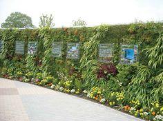「壁面緑化」の画像検索結果