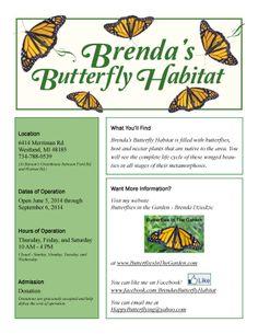 Brenda's Butterfly Habitat- add to summer to-do list