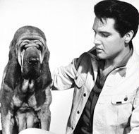 Elvis with a Bloodhound. Great music and my future dog combined, so amazing!
