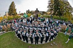 Grambling State University Tiger Marching Band HalfTime