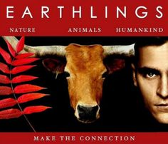 7 films that will explain to everyone why people go vegan  Read more: http://metro.co.uk/2015/12/23/7-films-that-will-explain-to-everyone-why-people-go-vegan-