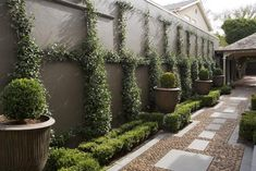 love all of this = but the path design really de-emphasizes the narrowness of this space...that espalier...xo