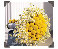 mini daisies! But I'd trade out the billy buttons for yellow carnations accented with pearl centered stephanotis