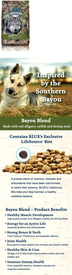 blue buffalo wild rocky mountain recipe adult rabbit dry dog food miscellaneous pinterest dog food dry dog food and rabbit