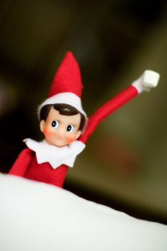 1000 Images About Holiday Christmas Elf On A Shelf On