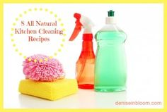 8 All Natural Kitchen Cleaning Recipes - Denise In Bloom   -   http://www.deniseinbloom.com/8-all-natural-kitchen-cleaning-recipes/