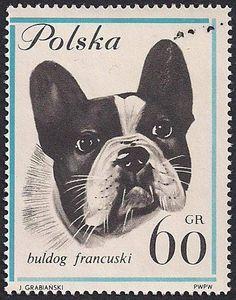 French Bulldog Polish Stamp