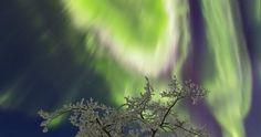 Auroras boreales desde Tromsø, Noruega | El Universo Hoy