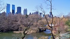 "Blick auf den See ""Pond"" mit Central Park West im Hintergrund - Check more at https://www.miles-around.de/nordamerika/usa/new-york/nyc-midtown-central-park-5th-avenue-top-of-the-rock/,  #5thAvenue #CentralPark #NewYork #NewYorkCity #NewYorkPass #Reisebericht #RockefellerCenter #TopoftheRocks #USA"