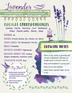 ostara traditions symbols - ostara traditions - ostara traditions recipes for - ostara traditions for kids - ostara traditions symbols - ostara traditions ideas - ostara traditions wicca - ostara traditions goddesses - ostara traditions book of shadows Magic Herbs, Herbal Magic, Plant Magic, Green Witchcraft, Wiccan Spells, Magick, Hoodoo Spells, Moon Spells, Witchcraft Herbs