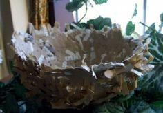 book page bird nest
