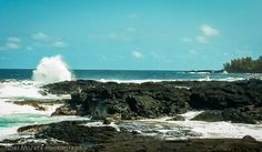 Richardson Beach - surfing, snorkeling an all around fun beach - A Big Island Life #Hilo #Bigisland #Hawaii