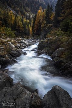 """""""Des montagnes, des arbres, la lumière, le vent, et au milieu coule une rivière...""""  http://schwartzkevin.weebly.com/"""