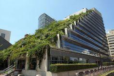 Acros Fukuoka building with Roof garden, in Fukuoka city, Japan.