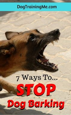 How to stop your dog from barking. Get to the root of the problem and learn to address it CORRECTLY! Say goodbye to your headaches. Learn 7 ways to stop dog barking by reading this article!
