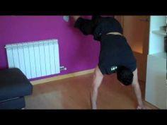 Ejercicios para adelgazar y definir / body definition workout - http://dietasparabajardepesos.com/blog/ejercicios-para-adelgazar-y-definir-body-definition-workout/