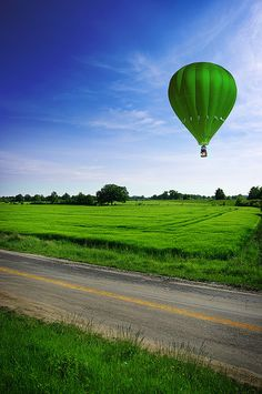 The Contrast between the blue and green makes this image very appealing to view.