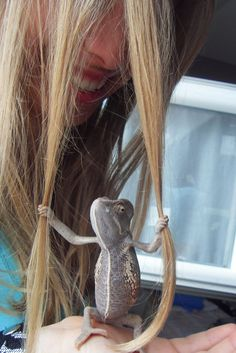 The lizard is real. The chameleon grabbed her hair, and it instantly became a picture classic.