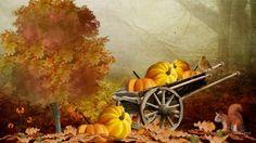 That Autumn Feeling - wagon, orange, harvest, fall, leaves, bird, flowers, trees, pumpkin, gold, rich, acorns, amber, nuts, thanksgiving, vintage, garden, fleurs, squirrel, autumn