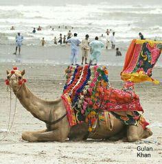 Awesome beauty of the Sea beach Karachi Pakistan