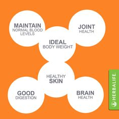 outer inner nutrition
