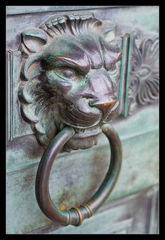 Lion head door knocker ... I'm torn between this one and the other.