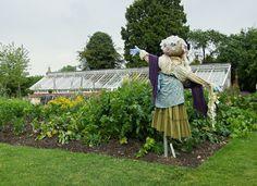 Scarecrow, Wightwick Manor