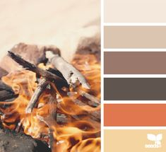 bonfire hues: cream, driftwood, chocolate brown, black-brown, fire oranage and butter yellow