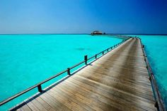 Maldives is an amazing place to go if you want to spent time in heaven on Earth. Maldives has it all you might wish: warm crystal clear water, white sandy beaches, palm trees, colorful marine life. Bora Bora, Places To Travel, Places To See, Beautiful World, Beautiful Places, Amazing Places, Places Around The World, Around The Worlds, Wow Travel