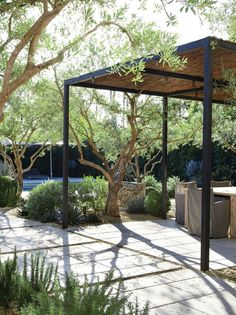 Garden Ideas - Xeriscape, Water Features, Ornamental Grasses | Apartment Therapy