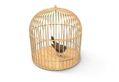 Tweety Bird Cage Large Parrot Cage, Flight Cage, Cad Programs, Drawing Programs, Wooden Bird, Make Ready, 3d Puzzles, Scroll Saw, Bird Cage