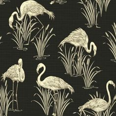 Buy Arthouse Lagoon Wallpaper - Black at Argos.co.uk, visit Argos.co.uk to shop online for Wallpaper
