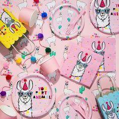 Llama Birthday Party Collection - Spritz™ : Target