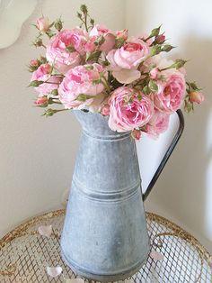 Beautiful pink garden roses, my favourite