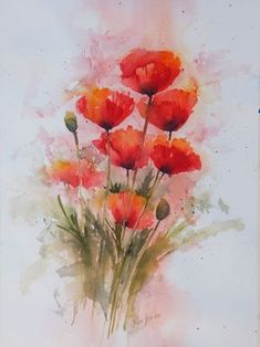 Image result for watercolor poppy painting