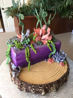 Succulent centrepiece cake-Bottom tier is chocolate cake with peanut butter frosting and chocolate rice puff bark. Top tier is triple layer chocolate hazelnut cake with buttercream icing airbrushed purple. Fondant/gum paste succulents and vines.