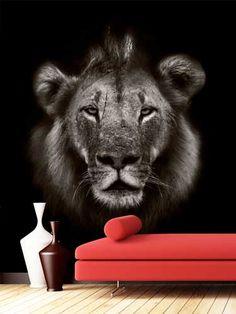 fotomural del rey de la selva, el león africano, para decorar las paredes de cualquier habitación