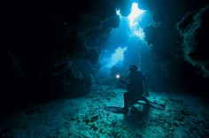 In this underwater photography guide, explore the ship-strewn waters of Bermuda diving and find out why this Atlantic island is considered the center of the universe for wreck diving. Underwater Images, Underwater Photography, Blue Hole, Photography Guide, Open Water, Scuba Diving, Places Ive Been, Shark, Photo Galleries