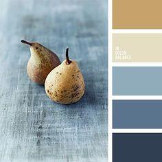 Color Pallette for Inspiration!